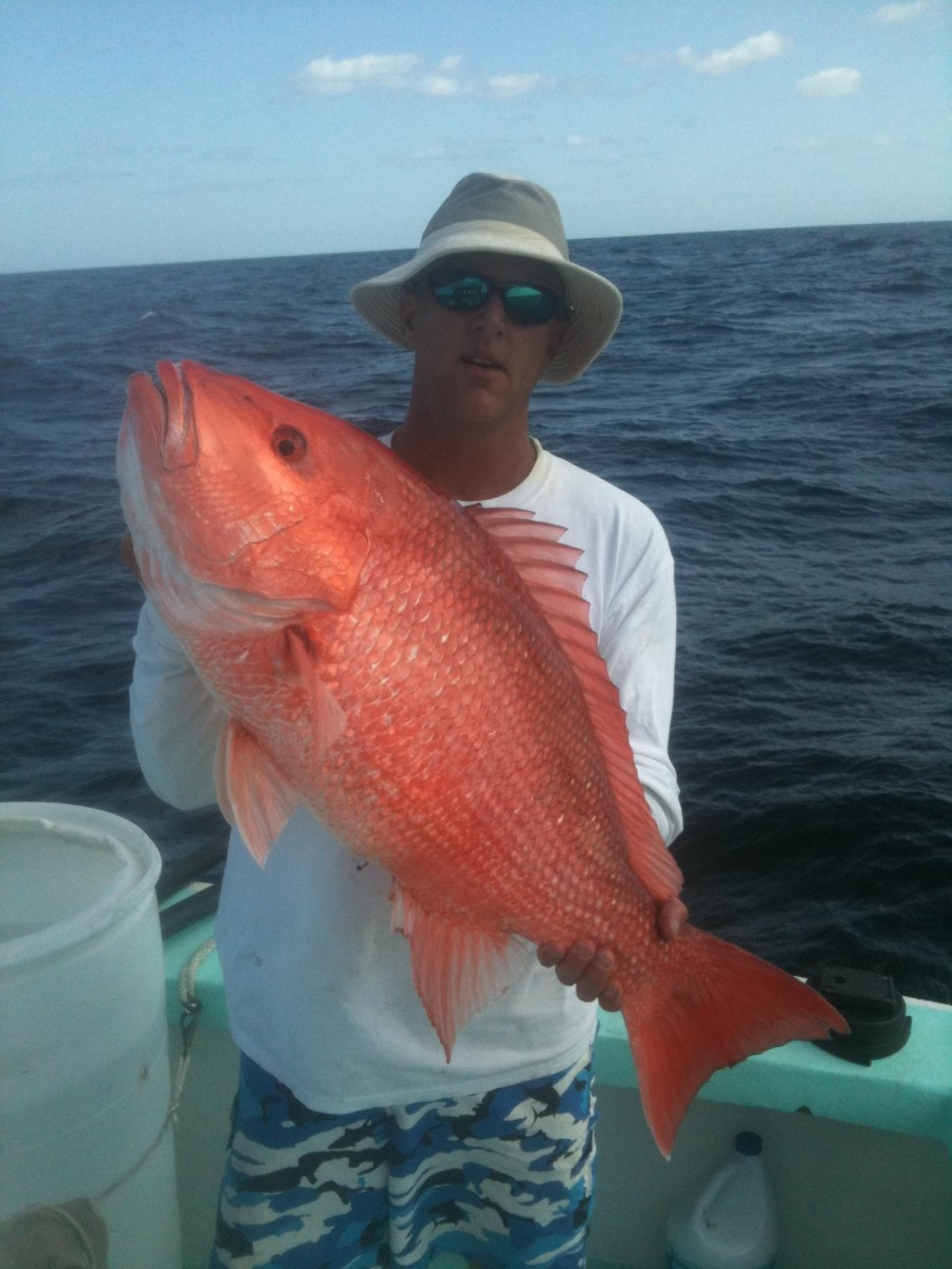 Snapper fishing tips port canaveral cocoa beach for Snapper fish florida