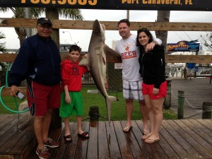 blacktip-shark100lb-port-canaveral