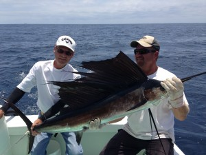 sailfish in Port Canaveral & Cocoa Beach, FL