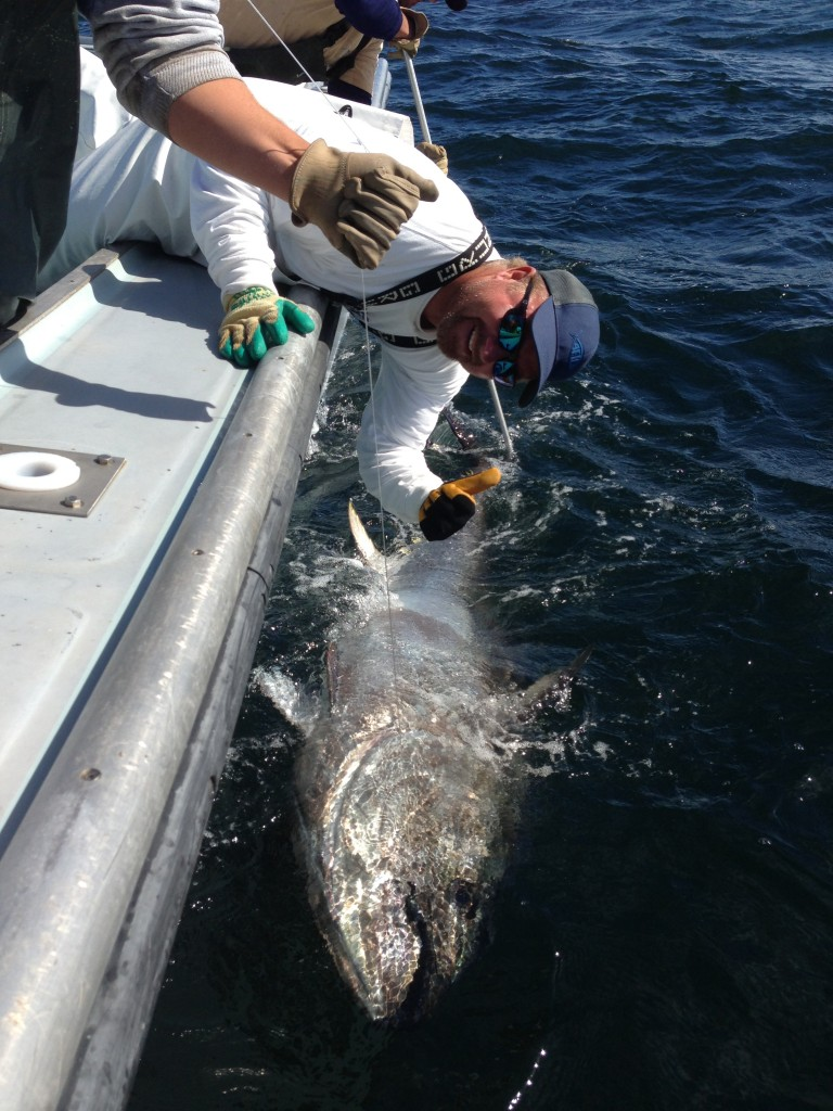 October 2013 port canaveral fishing report pei for Port canaveral fishing report