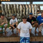 Port Canaveral fishing report 12/31/15